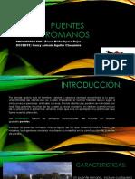 PUENTES R Bruce.pdf