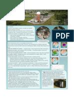 Sistemas de Alerta a Inundacoes_Poster_2011