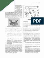 HISTORIA DEL PERU-23-44