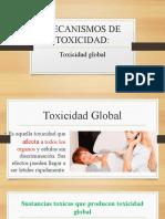 MECANISMOS DE TOXICIDAD GLOBAL