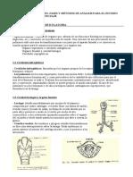 Resumen Fonética y Fonología