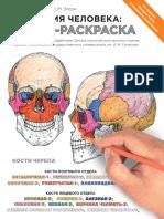 Anatomia_cheloveka_Atlas-raskraska_1