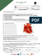 Ficha nº1 - Sist. circulatório.pdf