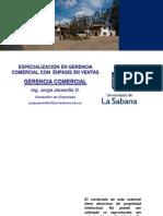 Agenda Gerencia Comercial.pdf