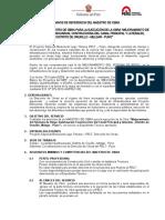 TERMINOS DE REFERENCIA - MAESTRO DE OBRA