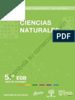 5egb-CCNN-F2