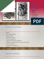 PM-P3-D3-G6-OBTENCION MAGNESIO.pptx