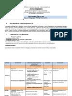 PROGRAMACIÓN PEDAGOGIA IIP.2020