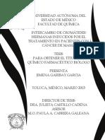 ich.pdf