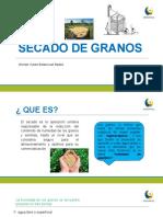 SECADO DE GRANOS.pptx
