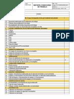 REPORTE CONDICIONES DE TRABAJO form.docx