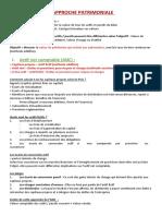 Cours méthode patrimoniale.docx