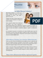 vdocuments.mx_adios-moscas-volantes-descargar-gratis-5794738571391.pdf