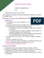 Metabolismo del Ca katy.pdf