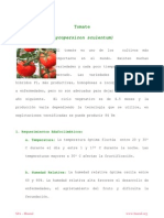 Ficha Tomate