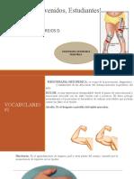 primera clase fisioterapia ortopedica pediatrica 2020