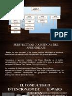 teorias cognitivas.pptx