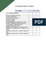 pauta evaluacion Area cognitivo vicente.docx