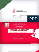 SEMANA 10 CADENA TRANSPORTADORA.pdf