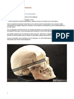 401791578-Occluso-cours-1-PDF-pdf (1)