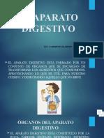 EL APARATO DIGESTIVO..pptx