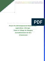 Projet-du-Développement-Rural-intégré-Dans-le-Village-de-Mengon.pdf