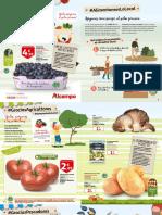 p222-8533-folleto-lo-local-12