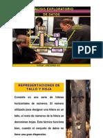 semana 3 análisis explorat datos.pdf