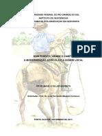 DOM PEDRITO, CIDADE E CAMPO_ A MODERNIZAÇÃO AGRÍCOLA E A CIDADE LOCAL - PDF Download grátis