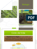 CICLOS-DE-VIDA_306f310699db0b070bbd8d993e9e326a