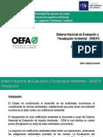 11.- Supervisión Ambiental - SINEFA