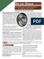2529 DOMINGO 13 DURANTE EL AÑO - 28 DE JUNIO 2020 - Nº 2529 - CICLO A