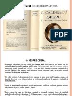 enigma_otiliei_de_george_calinescu