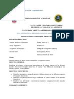 GUÍA DE PRACTICAS DE LABORATORIO (1).docx