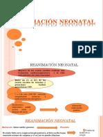 REANIMACIÓN NEONATAL (1) (1) (1)