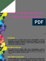 FORMAS DE REPRODUCIR LA ESCRITURA MATRIZ (2) (1)