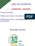 Purificao Das Proteinas