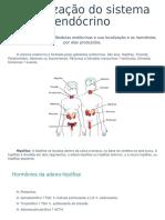 aula 17 - Organização do sistema endócrino
