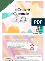 Los Consejos Comunales - presentacion