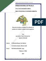 2019 - Remoción de sulfuros y turbidez en el proceso de pelambre