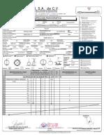 Copia de RT-46 reporte_de_inspeccion_radiografica (actual 2009)REV.5.pdf