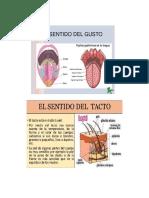 TRABAJO ISA RAMIREZ.pdf