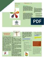 Folleto Sensibilización para la alimentación saludable.docx