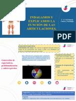2_PRI_CIENCIA Y TECNOLOGÍA_07_FUNCIONES DE LAS ARTICULACIONES_IIBIM