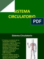 05 SISTEMA CARDIOVASCULAR.pdf