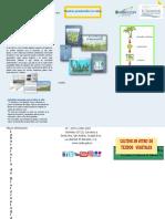 406089256-Cultivo-in-Vitro-convertido.docx