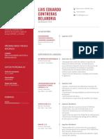 curriculum LC .Riga rojo.pdf