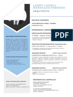 CV - Larry Lowell Paredes Bardales.pdf
