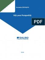 devsqlpg.handout.pdf