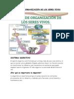 LOS NIVELES DE ORGANIZACION DE LOS SERES VIVOS.pdf